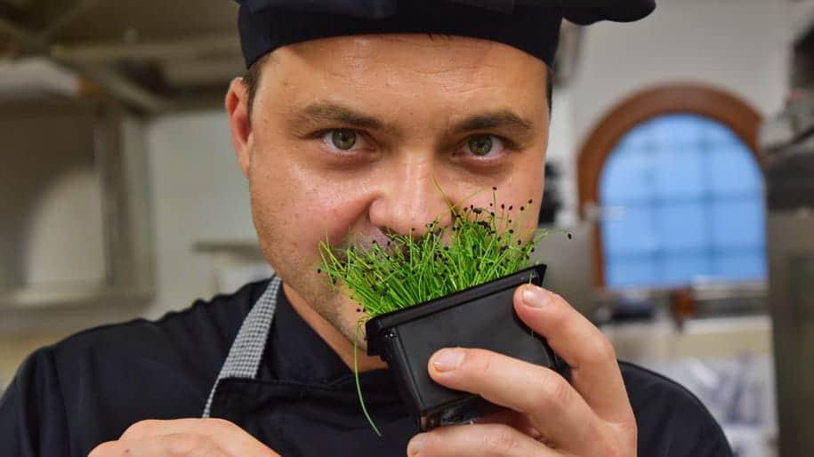Mikro zelenjava in Chef Miran Ojsteršek